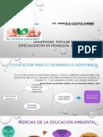 Pedagogía Ambiental y Desarrollo Sostenible- 2019 (1)
