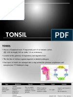 Tonsil + Deglutition + Taste