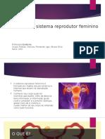 Algumas Doenças Do Sistema Reprodutor Feminino (1)