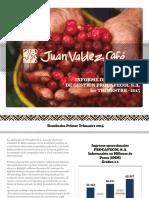 Informe Primer Trimestre 2015