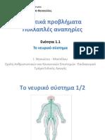 1.1 Το νευρικό σύστημα.pptx