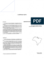 Depósitos de Bauxita Refratária Do PA-AP