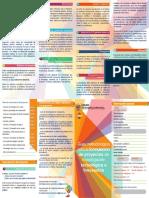 Modelo de Proyecto de Investigacion Tecnologica e Innovacion