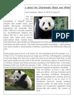 Third Grade Intensive Course - Giant Pandas (1)