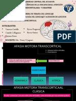 AFASIA TRANSCORTICAL MOROTA