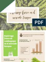 Espárragos en el mercado Europeo.pdf