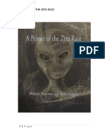 A_Primer_of_the_Zeta_Race.pdf
