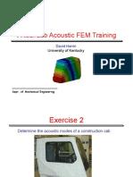 VL_Acoustic_FEM.pdf