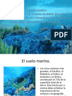 suelo marino