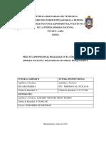InformePasantia