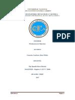 INFORME DE PETELIZACION.docx