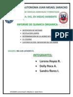INFORME DE ORGÁNICA