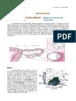 3° IMPLANTACIÓN Y GASTRULACIÓN.pdf