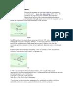 Funções orgânicas diversas