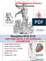 Introdução à Anatomia 2018
