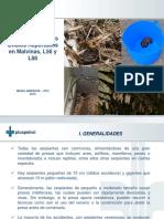 Guía de Principales Ofidios Reportados en Bajo Urubamba