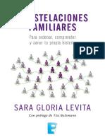 07 - Constelaciones Familiares Para Ordenar Comprender y Sanar Tu Historia - Sara Levita