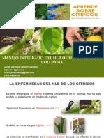 Manejo Integrado Del Hlb en Colombia