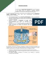 Flotación de minerale 3.2.3.4.docx