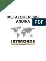 Metalogenesis Andina