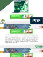 Presentación Programas Pedagógicos Transversales