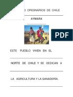 Pueblos originarios de Chile ADAPTADA.docx
