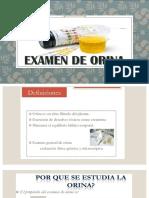Examen de Orina