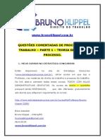 Questões Comentadas Proc Trabalho Bruno Klippel 1