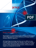 bioenergetics.pptx
