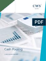 CMS_CashPooling_2010.pdf