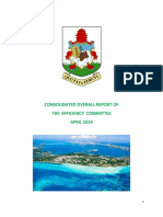 Consolidated Report of the Efficiency Committee March 2019