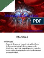 Inflamação Aguda e Cronica (1)