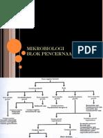 MB - Dr Irma - Mikrobiologi Pencernaan - S5B2