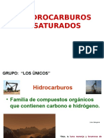 Hidrocarburos Saturados Los Unicos 22222222222222222222555 (1)