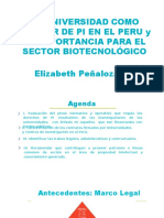 La Universidad Como Titulares de PI en El Peru 120319