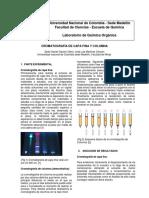 Informe definitivo Cromatografía.docx