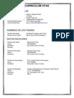 Curriculum Vitae Wilmer Vazquez Perez