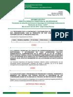 Informe Directiva 004 Dipon-dicar Modelo