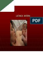 Lactancia Materna y Des Post Natal.pdf
