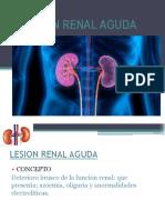 LESION-RENAL-AGUDA-2.0.ppt