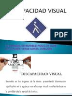 Discapacidad Visual Diap