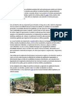 La Explotación Forestal Es Una