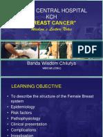 Breast Cancer Wln