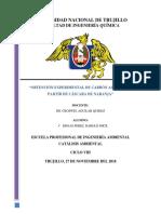 Informe Catalisis Carbon Activado