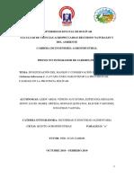 Proyecto Papa 2019 01 Finallll