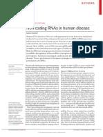 Arn no codificantes en  enfermedades humanas