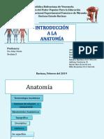 Diapositivas Introduccion a La Anatomía Roberto