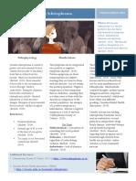p infographic pdf