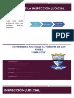 Exposicion Inspeccion Judicial (1)