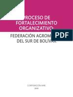 Proceso de Fortalecimiento Organizativo